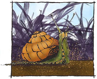 Slymerige slakke